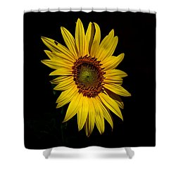 Yellow On Black Shower Curtain