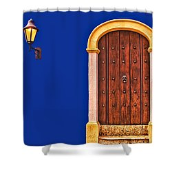 Door And Lamp Shower Curtain