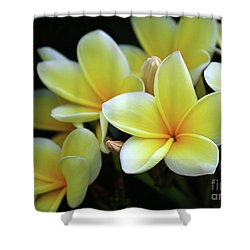 Yellow Plumeria Cascade Shower Curtain