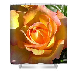Shower Curtain featuring the photograph Yellow Rose Bud by Debby Pueschel