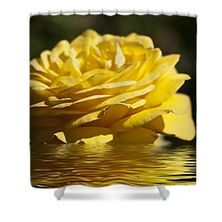 Yellow Rose Flood Shower Curtain