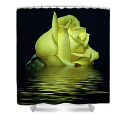 Yellow Rose II Shower Curtain
