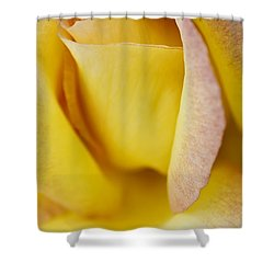 Yellow Rose Shower Curtain by Lana Enderle