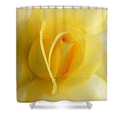 Yellow Rose Portrait Shower Curtain