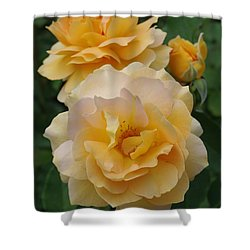 Shower Curtain featuring the photograph Yellow Roses by Marilyn Wilson