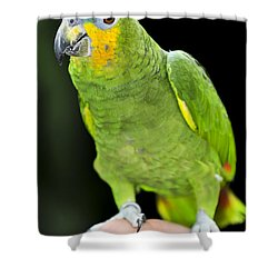 Yellow-shouldered Amazon Parrot Shower Curtain by Elena Elisseeva