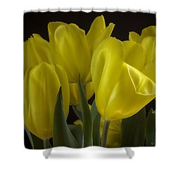 Shower Curtain featuring the photograph Yellow Silk by Lucinda Walter