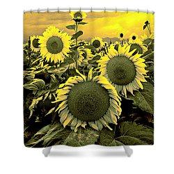 Yellow Sky Yellow Flowers. Shower Curtain