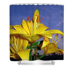 Yellow Spring  Shower Curtain
