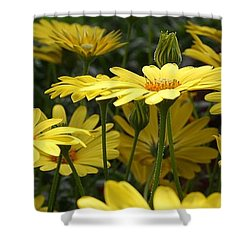 Yellow Splendor Shower Curtain