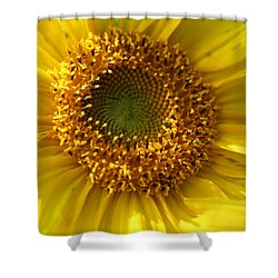 Shower Curtain featuring the photograph Yellow Sunshine by Neal Eslinger