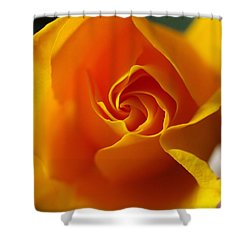Shower Curtain featuring the photograph Yellow Swirl by Joe Schofield