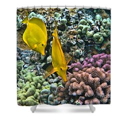 Shower Curtain featuring the photograph Yellow Tang Pair by Peggy Hughes