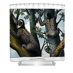 Yellow Throated Sloth Shower Curtain by Splendid Art Prints