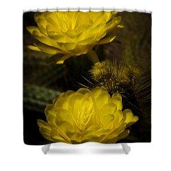 Yellow Torch Cactus  Shower Curtain by Saija  Lehtonen