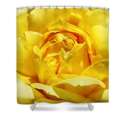 Yellow Tourmaline Rose Palm Springs Shower Curtain by William Dey