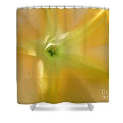 Yellow Translucent Flower Shower Curtain by Bev Conover