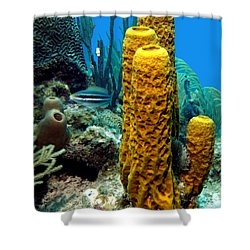 Yellow Tube Sponge Shower Curtain