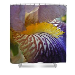 Shower Curtain featuring the photograph Yellow Tuft by Cheryl Hoyle