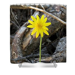 Yellow Wildflower Shower Curtain by Laurel Powell