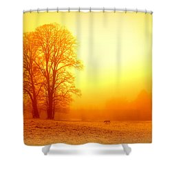 Yellow Winter Sunrise Shower Curtain by The Creative Minds Art and Photography