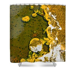 Yellowstone Abstract Shower Curtain by Jamie Pham