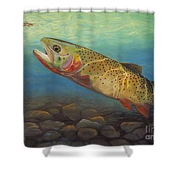 Yellowstone Cut Takes A Salmon Fly Shower Curtain