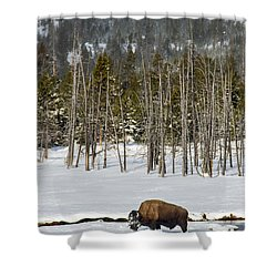 Yellowstone Winter Shower Curtain