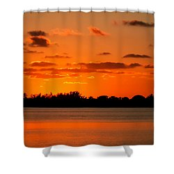 Yesterday Shower Curtain by Karen Wiles