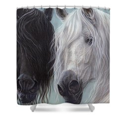Yin-yang Horses  Shower Curtain