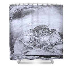 Shower Curtain featuring the drawing Ymir At Rest by Otto Rapp