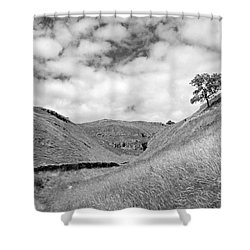 Lone Tree In The Yorkshire Dales Shower Curtain