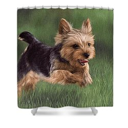 Yorkshire Terrier Painting Shower Curtain
