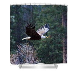 Yosemite Bald Eagle Shower Curtain
