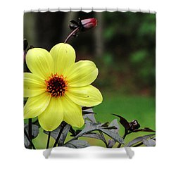 You Are My Sunshine Shower Curtain by Greg Simmons