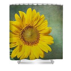 You Are My Sunshine Shower Curtain by Kim Hojnacki