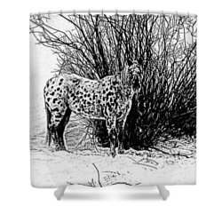 Shower Curtain featuring the photograph You Can't See Me by Karen Shackles
