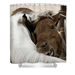 You Scratch Mine Shower Curtain