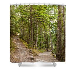 Shower Curtain featuring the photograph You Take The High Road And I'll Take The Low Road by John M Bailey
