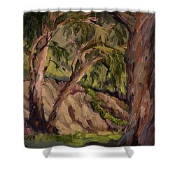 Young And Old Eucalyptus Shower Curtain by Jane Thorpe