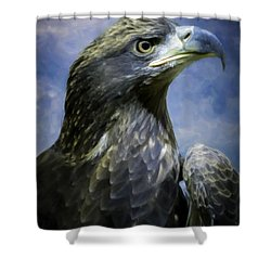 Young Bald Eagle V2 Shower Curtain by F Leblanc