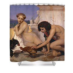 Young Greeks Attending A Cock Fight Shower Curtain by Jean Leon Gerome