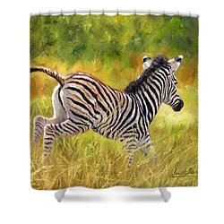 Young Zebra Shower Curtain by David Stribbling