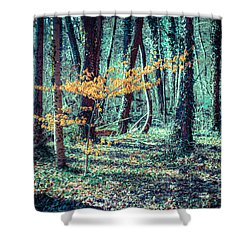 Youngster Shower Curtain by Hannes Cmarits