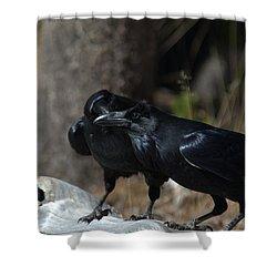You've Got Something On Your Beak Shower Curtain