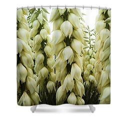 Yucca Forest Shower Curtain by Steven Milner