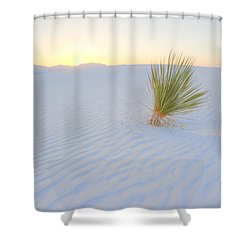 Shower Curtain featuring the photograph Yucca Plant At White Sands by Alan Vance Ley