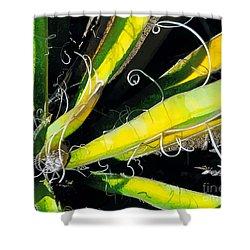 Yucca Spirals Shower Curtain