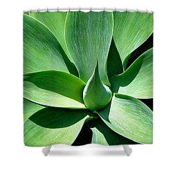 Yucca Sun Shower Curtain