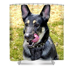 Shower Curtain featuring the photograph German Shepherd - Yum - Luther Fine Art by Luther Fine Art